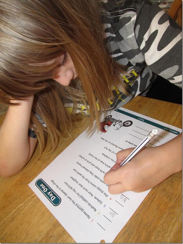 Review of Grade 3 Lightning Lit from Hewitt Homeschooling at Homeschooling Hearts & Minds 2