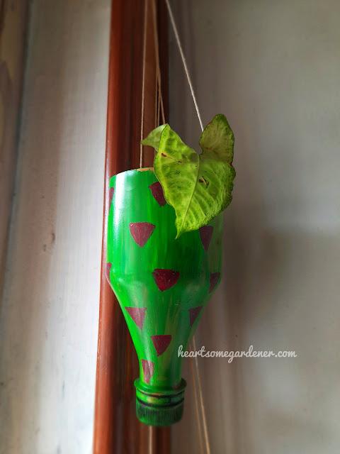 bottle gardening, planter designs