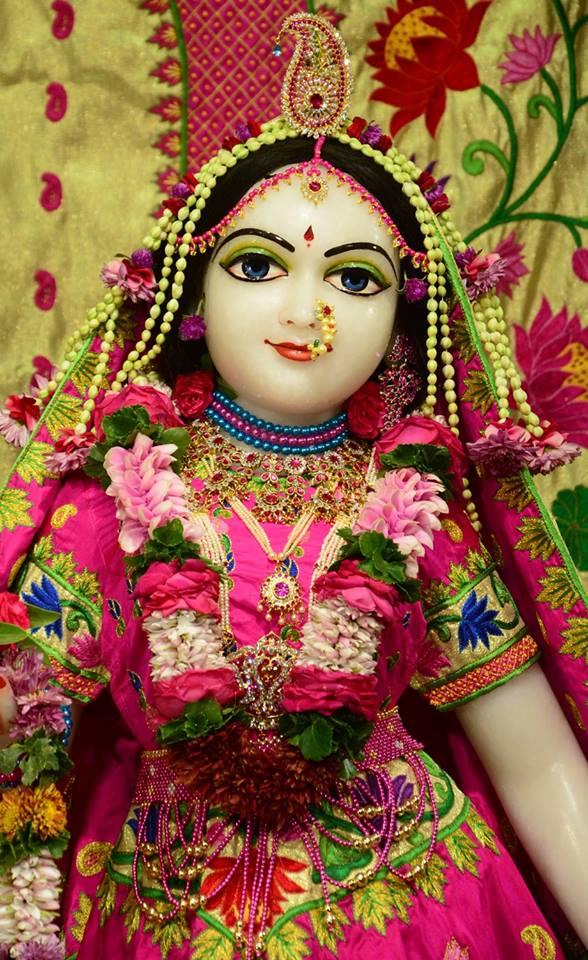ISKCON GEV Deity Darshan 08 Jan 2017 (16)