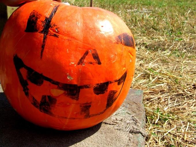 432 #ハロウィン #かぼちゃ #秋 #雑貨