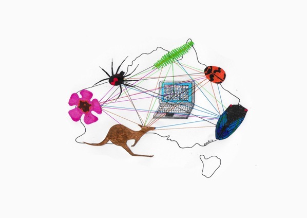 Biodiversity data v2