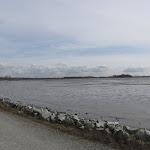 2011_03_06_Iona_McDonald_Beach