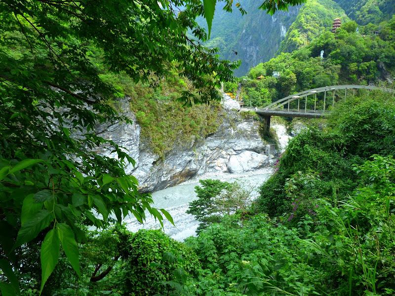 TAIWAN. Weekend Randonnée, Taipei à  Hehuanshan en passant par Puli, retour par les gorges de Taroko - P1290018.JPG