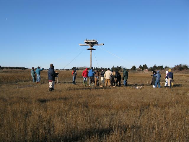 Osprey Platform - Jan 15, 2012 - IMG_8586.JPG