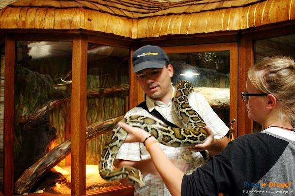 Tuchlino Park Egzotycznych Zwierzaków