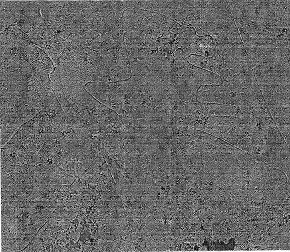 Геоглифи южного берега озера Балхаш 7