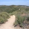 laguna-coast-wilderness-el-moro-014.jpg