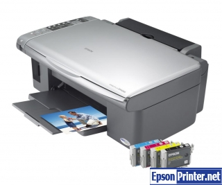 How to reset Epson DX5000 with program