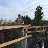 Christmas Tree Pickup - January 2016 - IMG_5733.JPG
