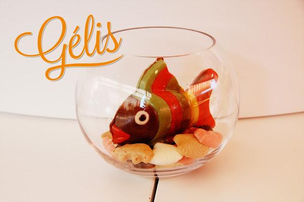 aquarium-poisson-chocolat-ptte.jpg
