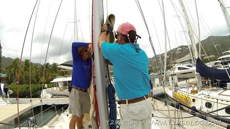 Bob e Eddie lavorano all'albero - Tortola