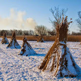 Winter - Winter-061.jpg