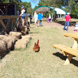 Blessington Farms - 116_5063.JPG