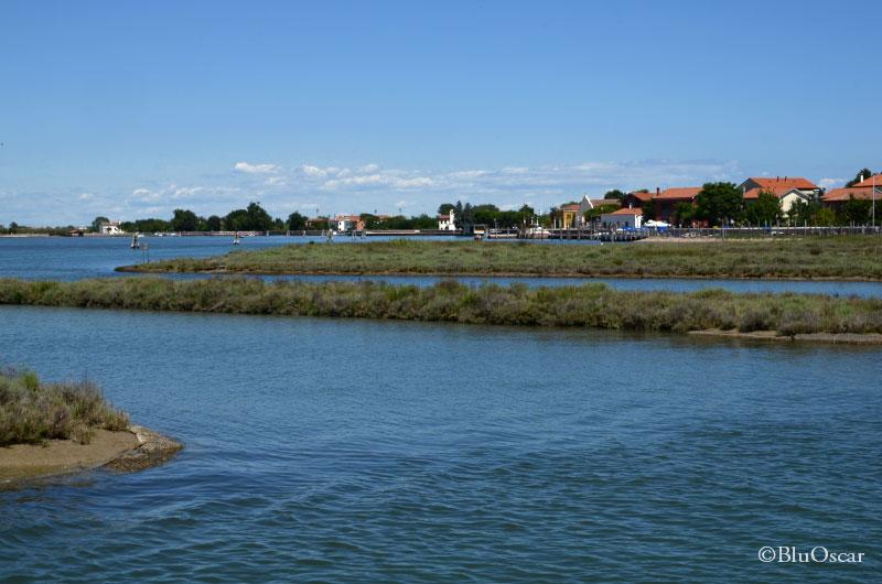 Isola di S Erasmo 05 09 2017 N5