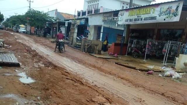 Ruas Jalan Banyumas Pringsewu Rusak Parah, Tanggung Jawab Siapa?