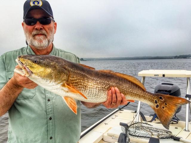 North florida fishing report jacksonville fishing report for North florida fishing report