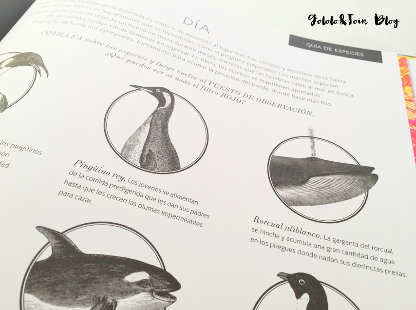 iluminaturaleza-SM-editorial-libros-niños-animales-naturaleza