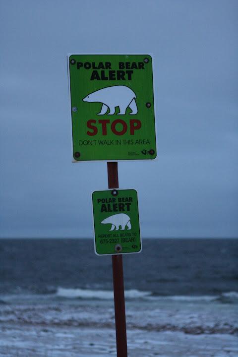 Vor Eisbären wird in Churchill am Ortsrand gewarnt