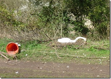 3 swan nest towpath radfor  area