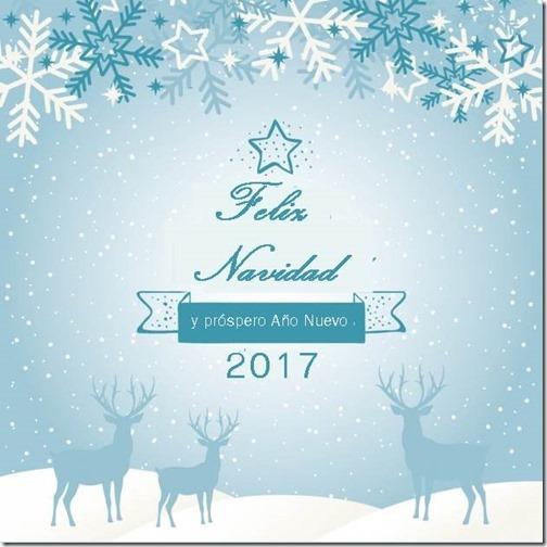 feliz año nuevo 2017 (12)