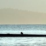 Kodiak to Juneau
