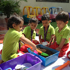 Gardening Activity in Nursery at Witty World.