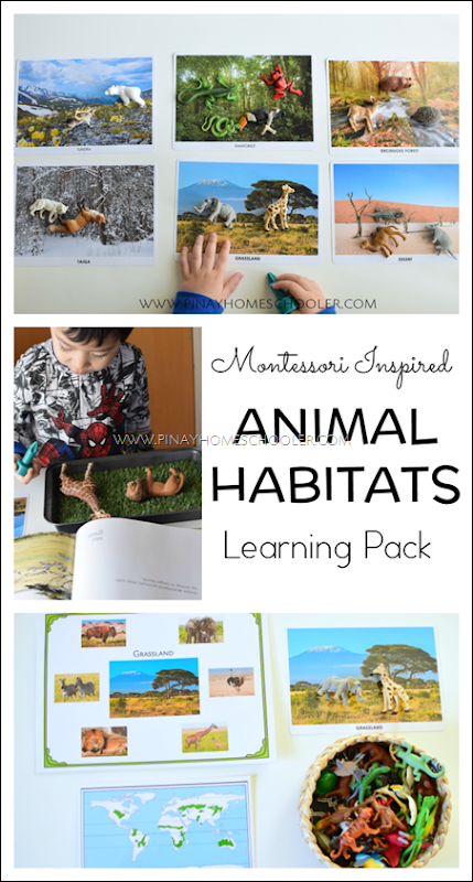 Animal Habitats Sorting and Activity Sheets