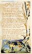 The Tyger Poem By William Blake
