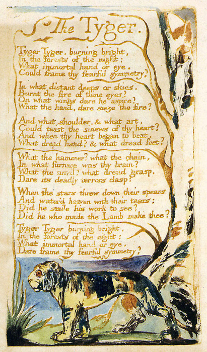 The Tyger Poem By William Blake, William Blake