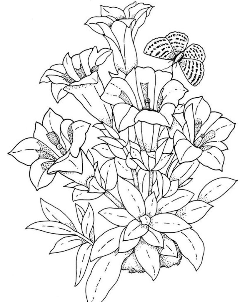 Best Free Flowers Coloring Pages For Adults Pictures