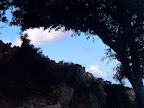 HINTERLAND Ikaria 13: Sky through tree shades
