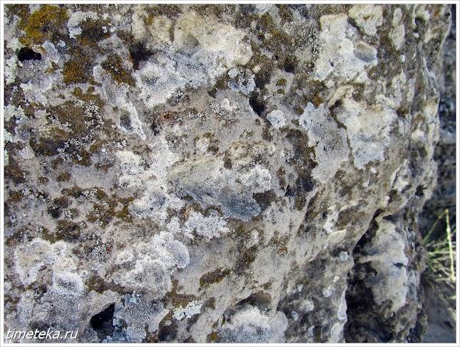 Структура камня