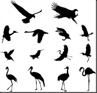 various_birds_silhouettes_vector_set_546205