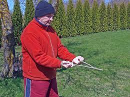 Cara Mencari Emas Secara Tradisional (Teknik Drowsing Rod)