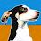 Mascotas.Eurekka.org's profile photo