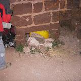 Sortida Castell Eramprunyà - Pioners 2009 - DSCN1040.JPG