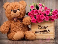 buon martedi immagine con frase aforismo-peluches-orsacchiotto-rose-fiori.jpg