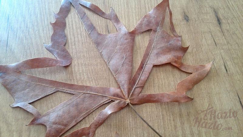 Cómo cortar hojas