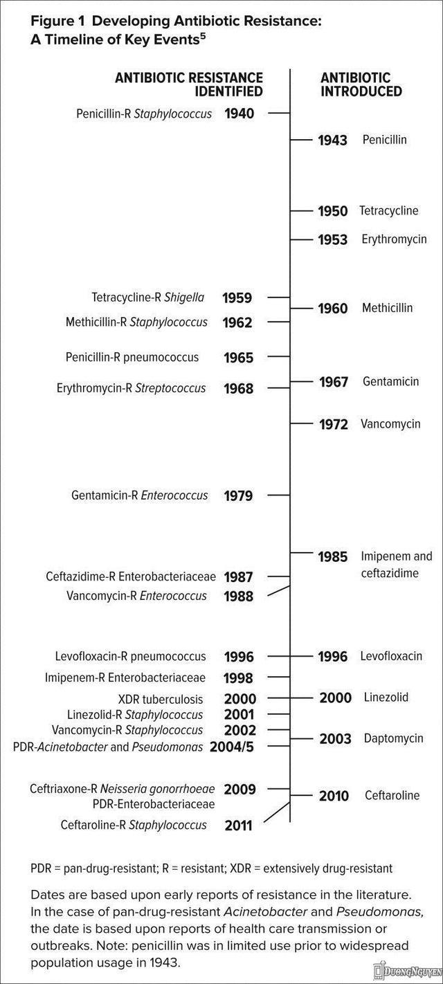 Dòng thời gian biểu hiện vi khuẩn kháng kháng sinh xuất hiện khi ta tìm ra được một loại kháng sinh mới.Năm 1943, penicillin bị hạn chế sử dụng do dân chúng sử dụng quá nhiều.