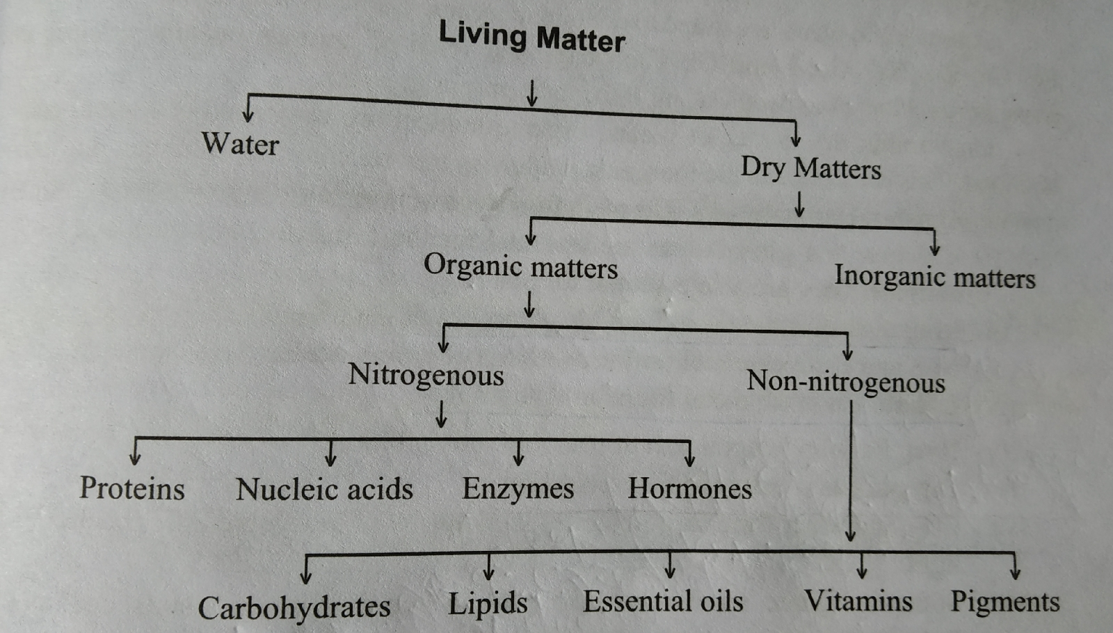 Classification of constituents of living bodies