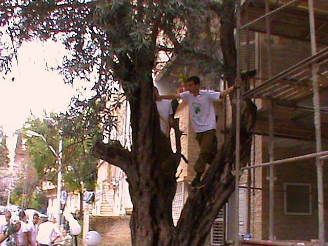 שיפוץ והרחבת הבית החם לניצולי השואה