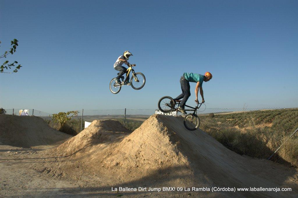 Ballena Dirt Jump BMX 2009 - BMX_09_0117.jpg