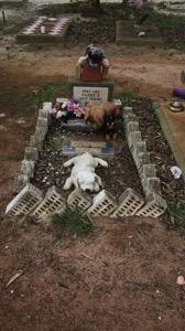 Dog Grave 001