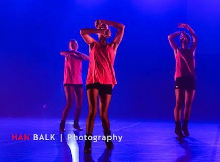 Han Balk Voorster Dansdag 2016-4621-2.jpg
