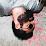 Andrew Sedlak's profile photo