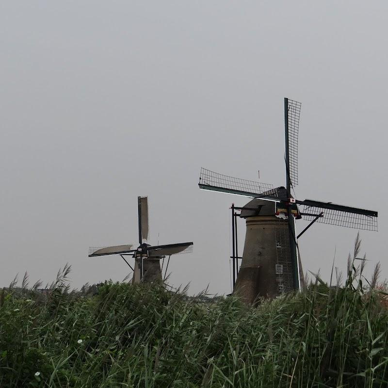 Day_6_Kinderdijk_05.JPG