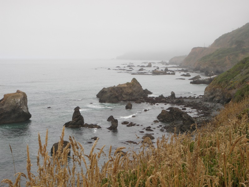 Redwood Coast • Mendocino Coast