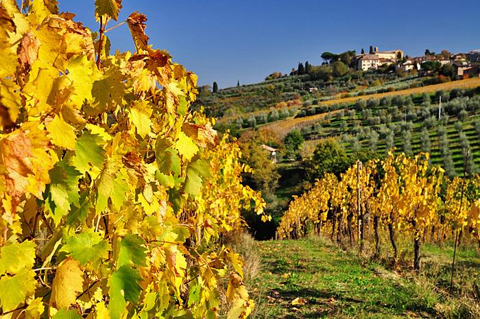 Toscana13.JPG