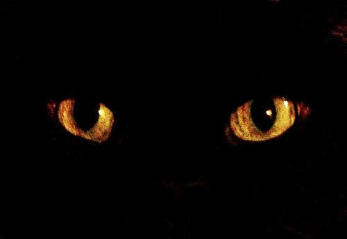 Superstitious Minds Explained