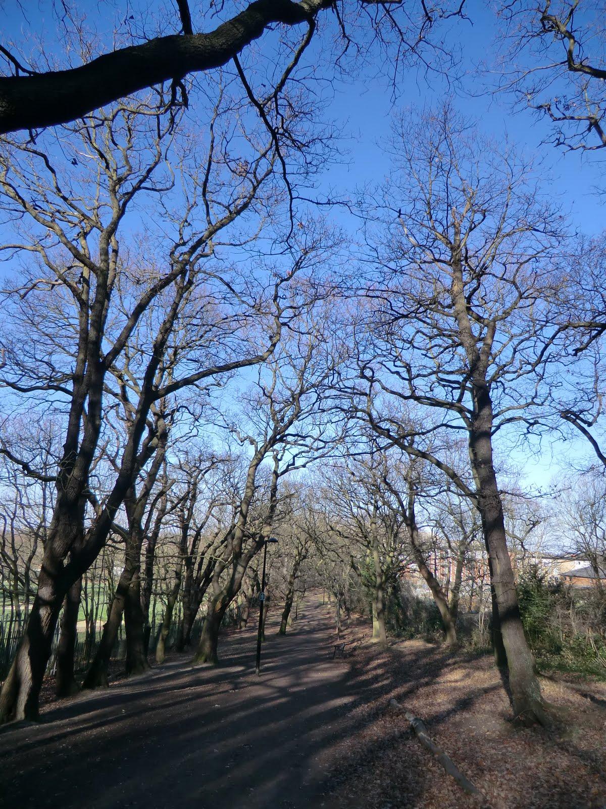 CIMG1567 Cox's Walk